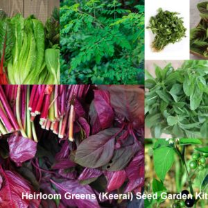 Essential Greens (Keerai) Garden Seed Kit