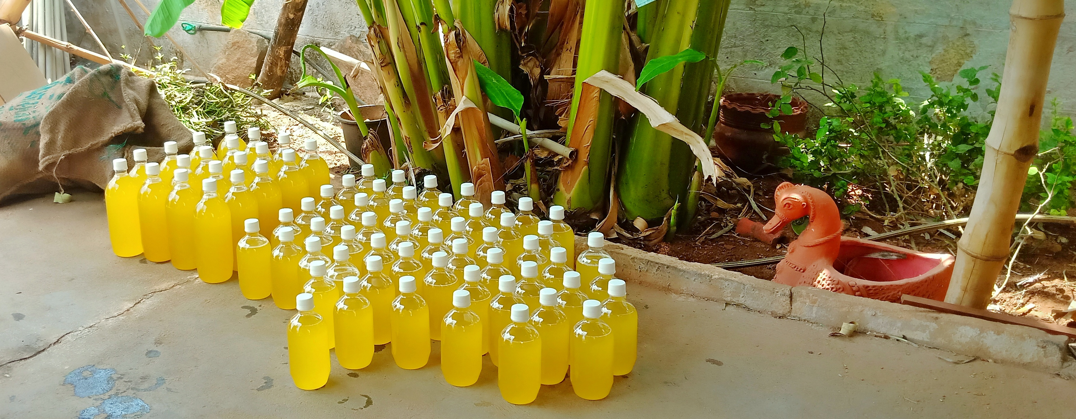 100% Pure Cold Pressed Groundnut Oil - Just in May 2019