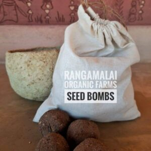 Seed Bombs – Making Our Plant Greener