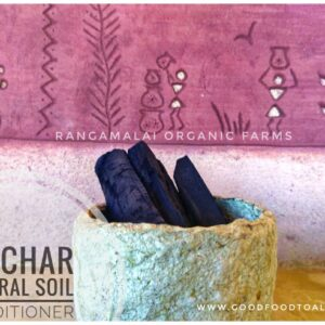 Biochar – Natural Soil Conditioner