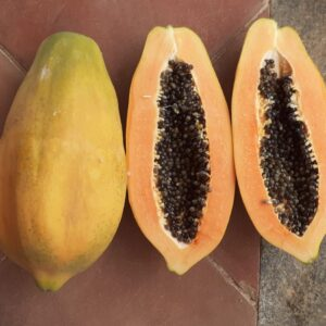 Papaya Native Variety – ROF